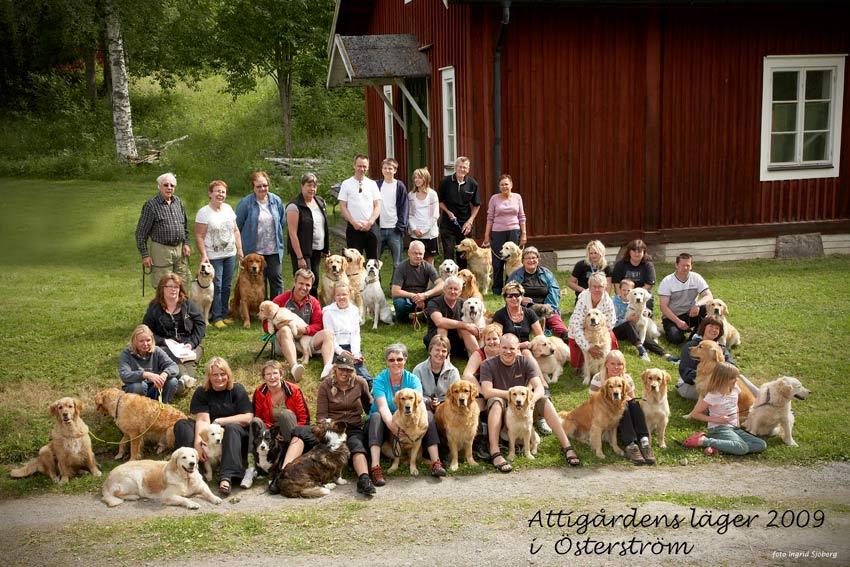 Attigårdenläger i Österström 2009